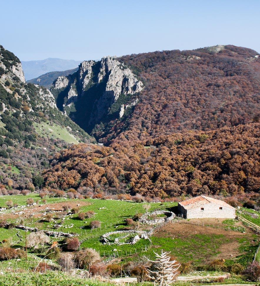 Parco delle Madonie - Piano Battaglia