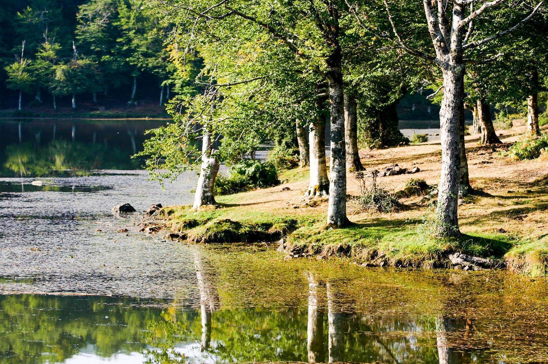 parco-dei-nebrodi_lago-maulazzo