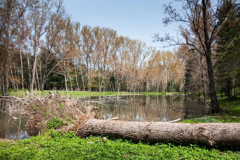 parco-dei-nebrodi_lago-monte-soro