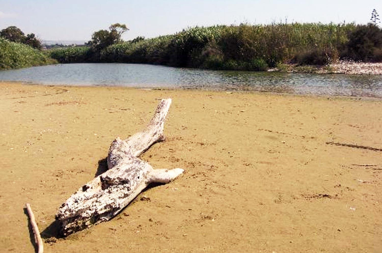 Riserva Naturale del Fiume Irminio