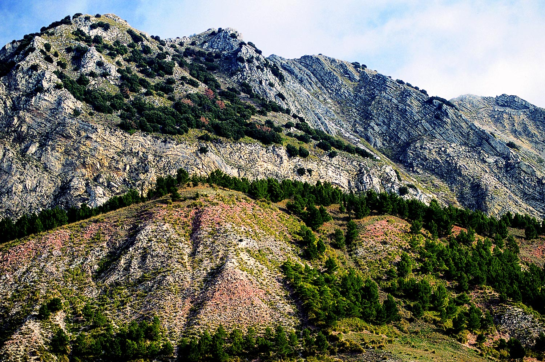 Riserva Naturale di Monte Cammarata