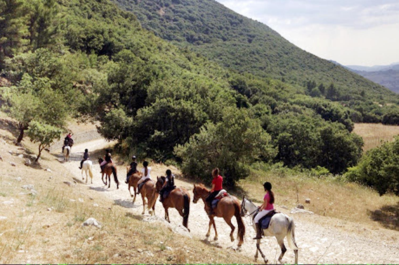 Riserva Naturale di Monte Carcaci
