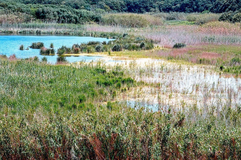 Riserva Natura Preola e Gorghi Tondi